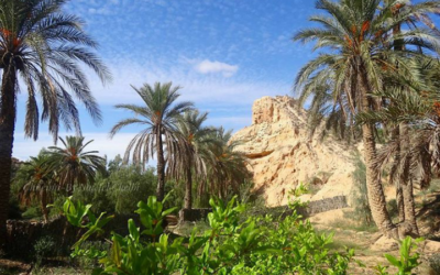 A la découverte de l'oasis de Chenini