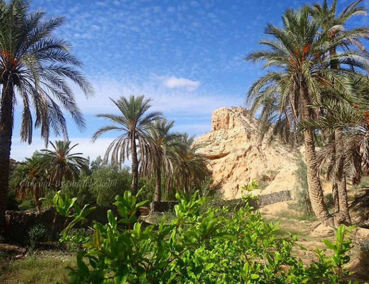 Let's discover the oasis of Chenini