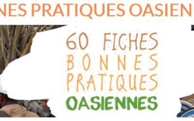 Good practises on Adaptive oasis management are published now!
