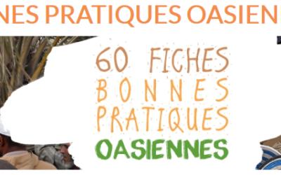 Publiées les bonnes pratiques de gestion adaptative de l'oasis !